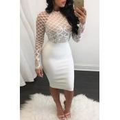 Trendy O Neck Long Sleeves Mesh Patchwork White Polyester Sheath Knee Length Dress