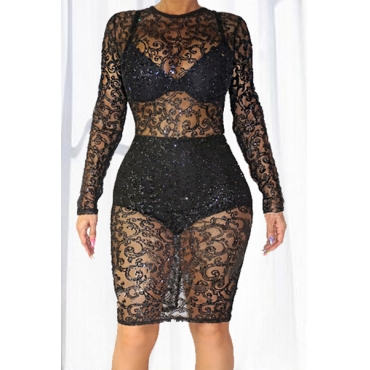 Sexy Round Neck Long Sleeves See-Through Black Lace Sheath Knee Length Dress (Include Briefs)