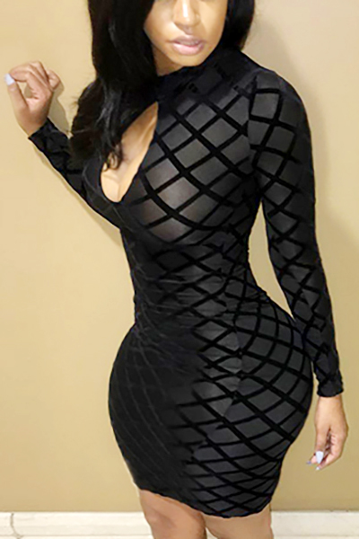 Lovely Sexy Round Neck Long Sleeves Hollow-out Black Polyester Sheath Knee Length Dress