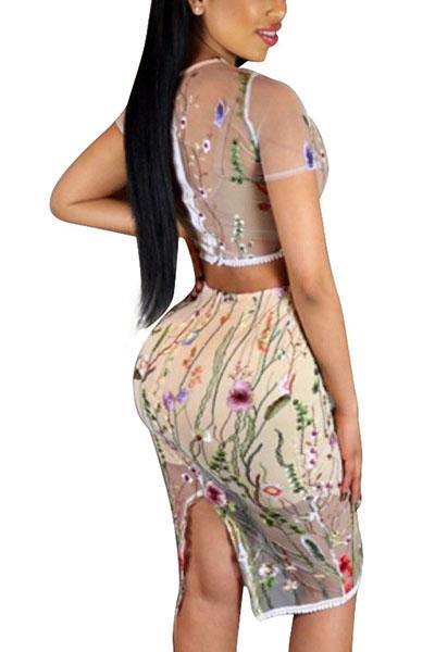 Sexy cuello redondo mangas cortas ver-A través de Poliéster Beige Dos-piece Conjunto de la falda