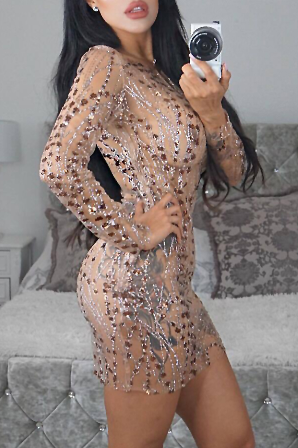 Sexy Round Neck See-Through Sequined Decorative Beige Milk Fiber Mini Dress(With Lining)