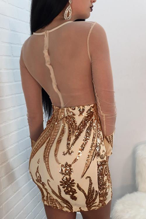 Precioso Sexy Cuello Redondo Transparente Lentejuelas Decoración Hilo Neto Empalme Oro Mini Vestido De Poliéster