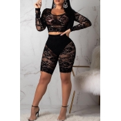 Lovely Trendy See-through Black Lace Two-piece Sho