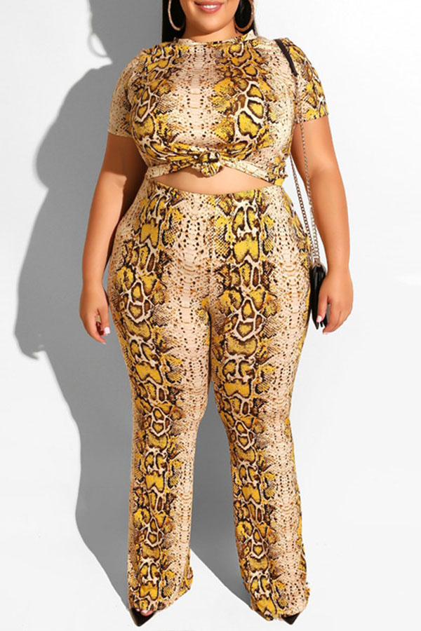 Lovely Casual Snakeskin Pattern Printed Apricot Plus Size Two-piece Pants Set