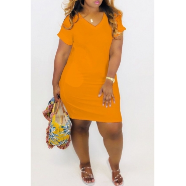 Lovely Casual V Neck Croci Mini A Line Dress