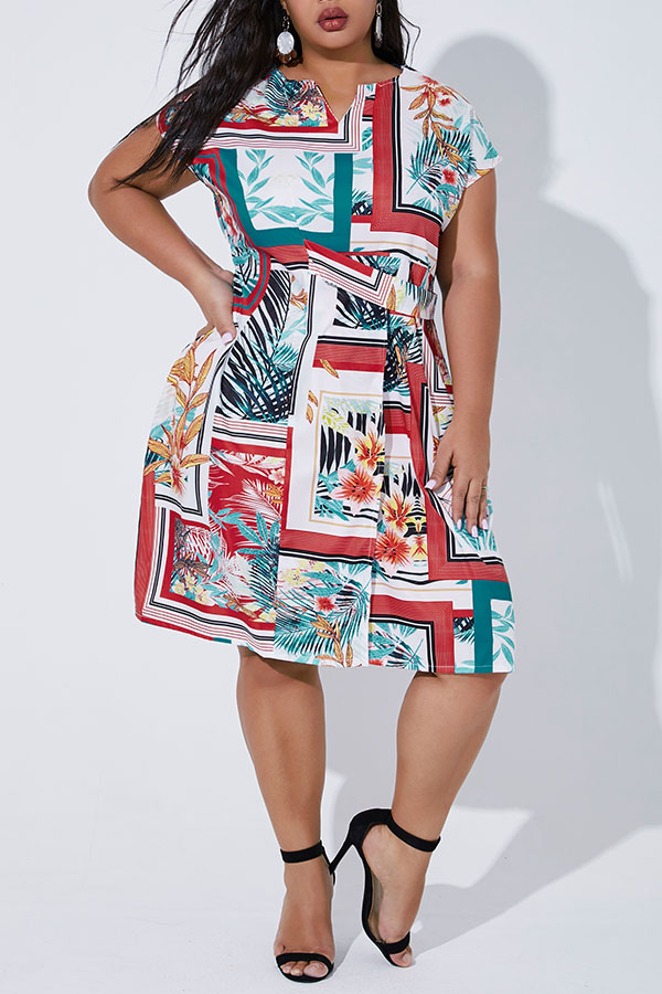 Lovely Casual Printed Multicolor Plus Size Mini Dress