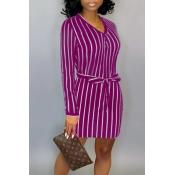 Lovely Casual Striped Purple Mini Dress