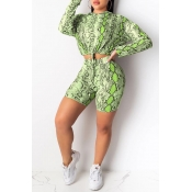 Lovely Casual Hooded Collar Printed Green Two-piec