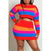 Lovely Casual Striped Multicolor Plus Size Two-pie