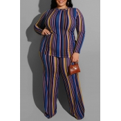 Lovely Casual Striped Blue Plus Size Two-piece Pan