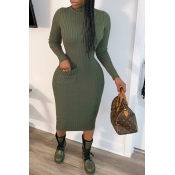 Lovely Casual Turtleneck Blackish Green Mid Calf