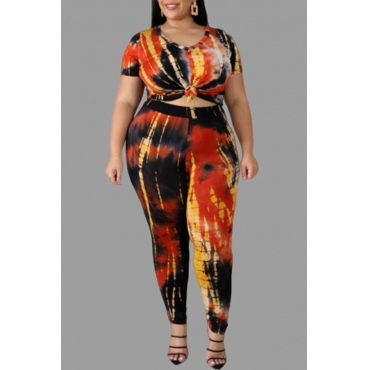 Lovely Chic Printed Multicolor Plus Size Two-piece Pants Set
