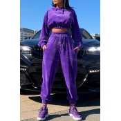 Lovely Casual Hooded Collar Crop Top Purple Two-pi
