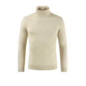 Lovely Chic Turtleneck Beige Sweater