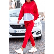 Lovely Casual Patchwork Red Two-piece Pants Set