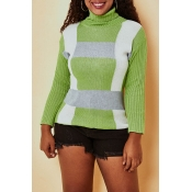 Lovely Casual Turtleneck Green Sweater