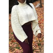 Lovely Casual Turtleneck White Sweater