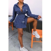 Lovely Trendy Turndown Collar Buttons Blue Two-pie