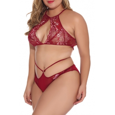 Lovely Sexy Hollow-out Wine Red Bra Sets