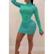 Lovely Casual Turtleneck Print Cyan Mini Dress