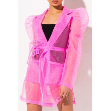 Lovely Trendy See-through Pink Mini Dress