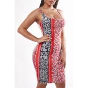 Lovely Sexy U Neck Leopard Print Knee Length Dress