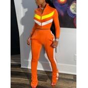 lovely Sportswear Zipper Design Patchwork Croci Tw