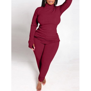 Lovely Casual Turtleneck Basic Wine Red Plus Size