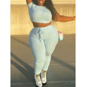 Lovely Casual O Neck Drawstring Baby Blue Plus Size Two-piece Pants Set