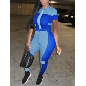 Lovely Sporty O Neck Color-lump Patchwork Blue Plus Size Two-piece Pants Set