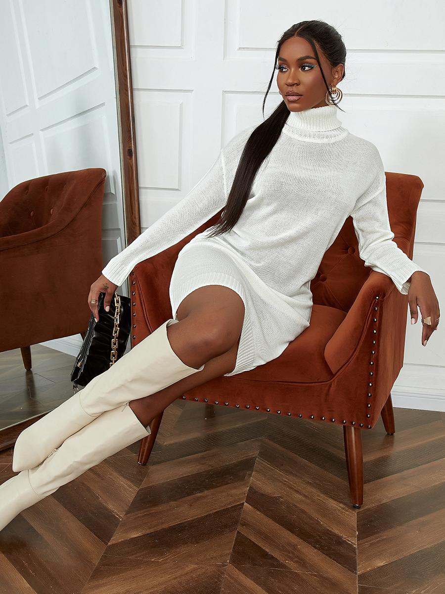 LW Knitted Turtleneck Solid Dress
